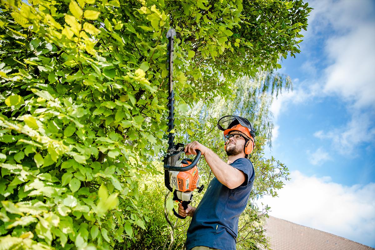 Ein Mitarbeiter mit einer Motorsäge von Hagedorn Garten- und Landschaftsbau in Osnabrück Georgsmarienhütte